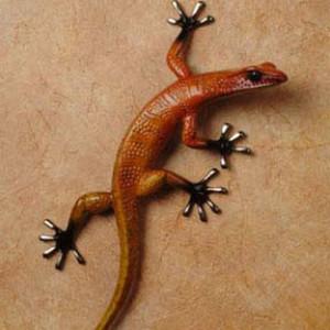 Gecko - Fuego