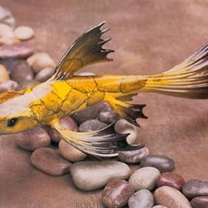Koi - Mellow Yellow