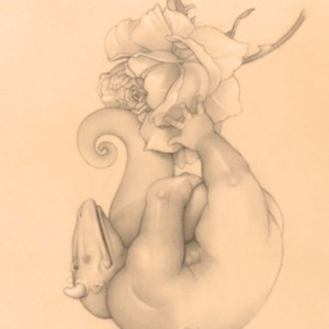 """""""Rose Play"""" Fine Art Edition on Paper by Michael Parkes"""