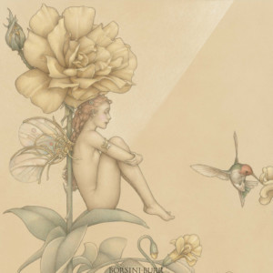 """""""Shade of the Rose"""" Fine Art Edition on Vellum by Michael Parkes"""