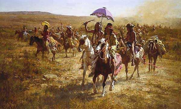 Comanche Spoilers–1986