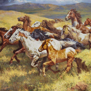 Thunder of the Wild Mustangs